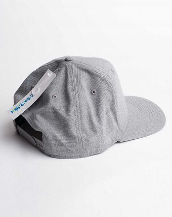 Бейсболка Iriedaily Patch Snap Cap Grey Mel