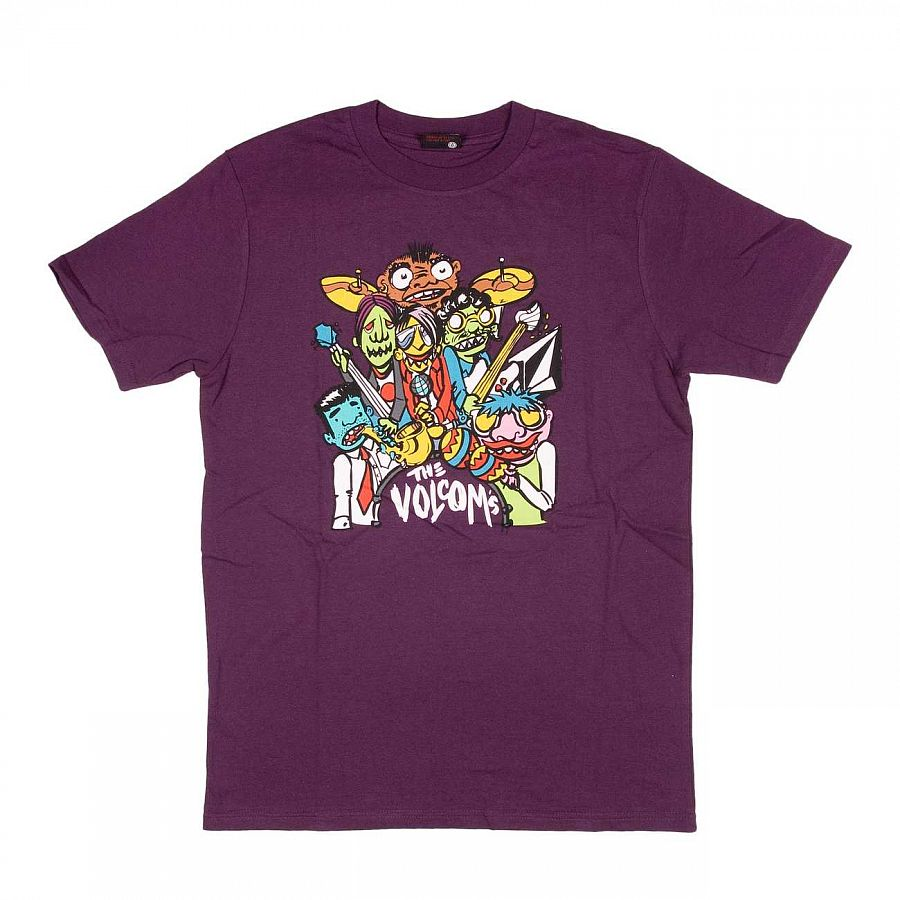 купить Футболка Volcom The Volcoms SS Basic Tee PLM в Москве